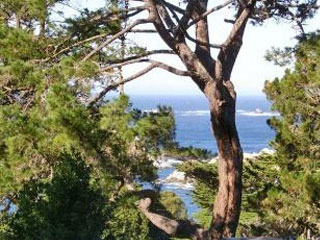 Carmel Writing Retreats - the view
